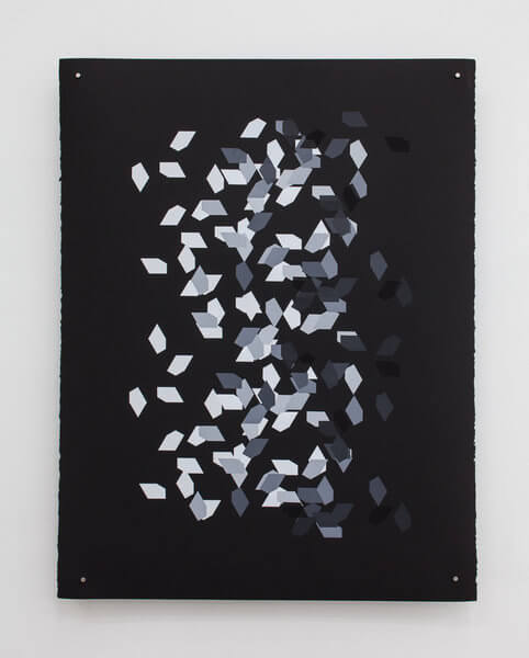 1185_9 Jan Tichy, Type 5 ,2015, Screen print, acrylic on paper, 74x57 cm (31)-482x600 (1)