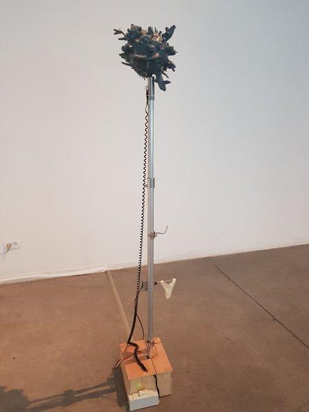 1508_g-450x600